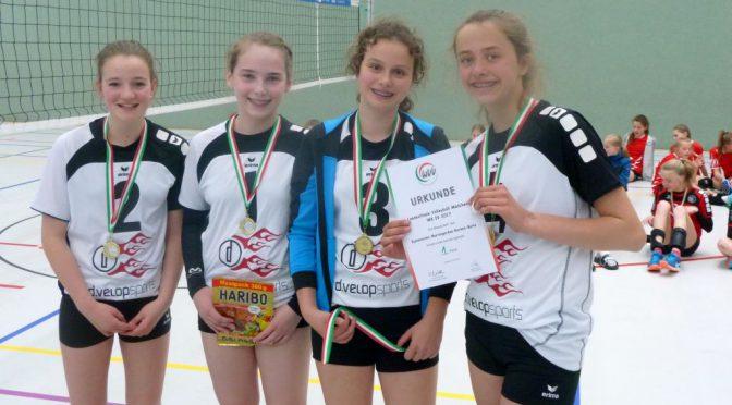 Volleyballteam wird Landesmeister